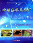 鑫华玉器厂