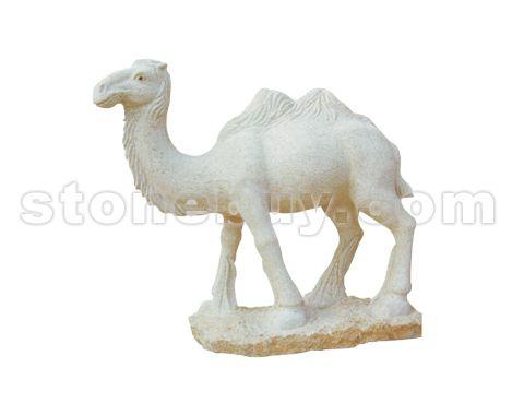 骆驼 NO:DDC25847