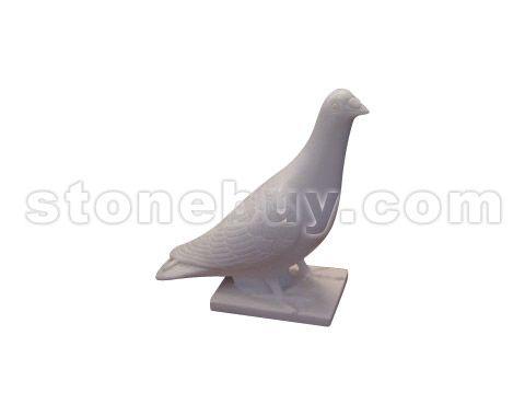 鸽 NO:DDG24453