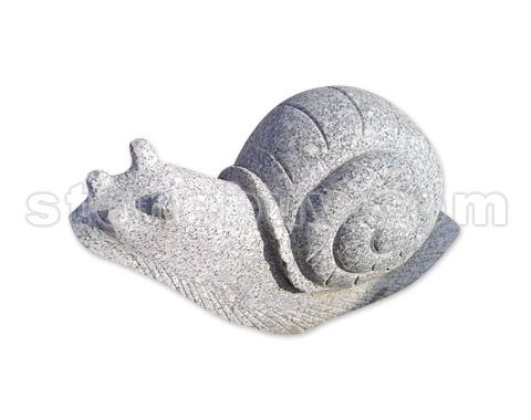 蜗牛 NO:DDO24249