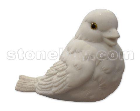 鸽 NO:DDG22175