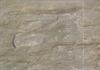 木纹青石板
